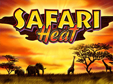 Игровой аппарат Вулкан Safari Heat онлайн