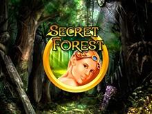 Игровой аппарат Вулкан Secret Forest онлайн