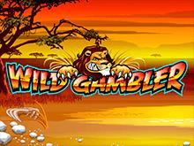 Игровые аппараты Вулкан Wild Gambler