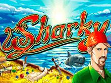 Sharky в клубе Вулкан