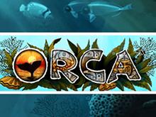 Игровой аппарат Вулкан Orca