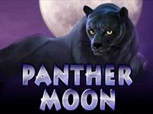 Игровой аппарат Вулкан Panther Moon онлайн