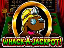 Whack A Jackpot в Вулкане на деньги